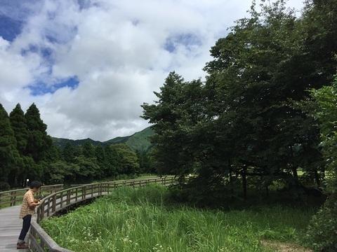 kumamoto15.jpg
